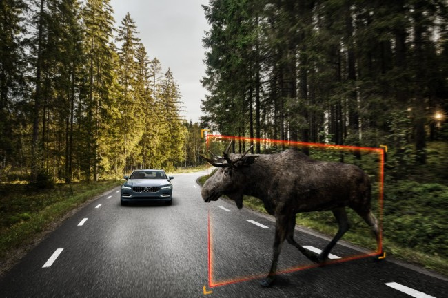 171459_Exterior_Large_Animal_Detection_Volvo_S90_1